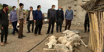 بازدید احمد مرادی از روستاهای سیل زده منطقه کوهشاه احمدی
