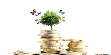 سامانه معرفی فرصتهای سرمایه گذاری در ایلام راه اندازی میشود