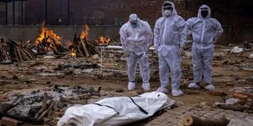 افزایش 6 درصدی قربانیان کرونا در جهان؛ سهم هند یک فوتی از هر 4 نفر