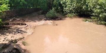 سیل در روستای مشهد شهرستان دماوند؛ مردم: مسیر مسدود است/ فرماندار: راه باز است!