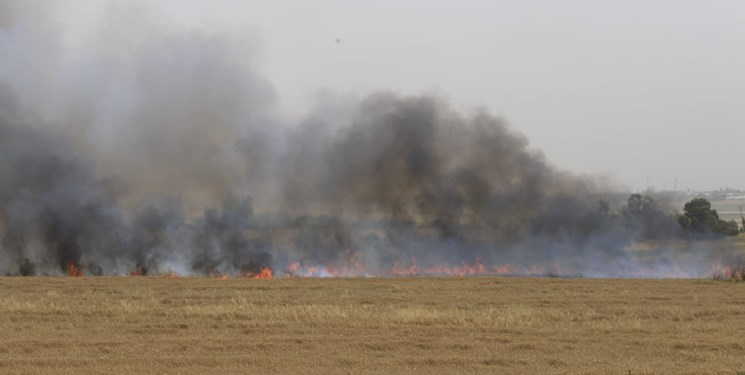 اذعان صهیونیستها به 35 مورد آتش سوزی در جنوب اسرائیل