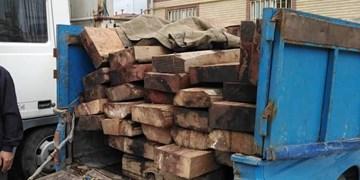 جزئیات انهدام باند قاچاق چوب جنگلهای شمال/ دستگیری 3 نیروی اداره منابع طبیعی