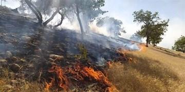 تداوم آتشسوزی در کوهمره سرخی میمند