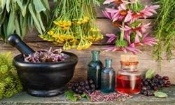 گیاه درمانی چیست؛ پیشگیری از بیماری با عصارههایی شفابخش