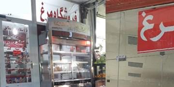 ویترین خالی مرغ فروشان/ پای مرغ هم از سفره بوشهریها بریده شد