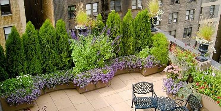 احداث باغچههای محلی با مشارکت پایتختنشینها