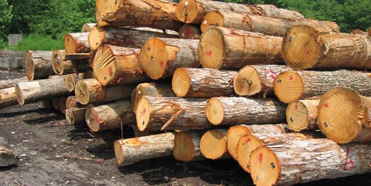کشف محموله چوب طاق قاچاق در دامغان