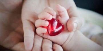 جوکار: لزوم نامگذاری 8 دیماه به عنوان «روز ملی درمان نوین ناباروری»