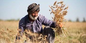 رئیس جمهور آینده چه وظیفه ای در بخش کشاورزی دارد؟
