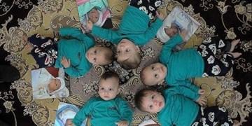 حمایت بهزیستی از خانوارهای دارای فرزندان چندقلو/ پرداخت مستمری ماهانه ۵ میلیون ریالی