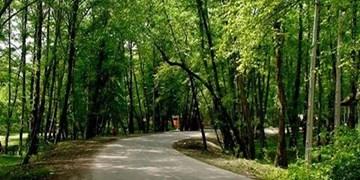 واگذاری 30 ساله بوستان جنگلی چیتگر به شهرداری