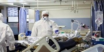 سه نفر دیگر در بوشهر قربانی کرونا شدند