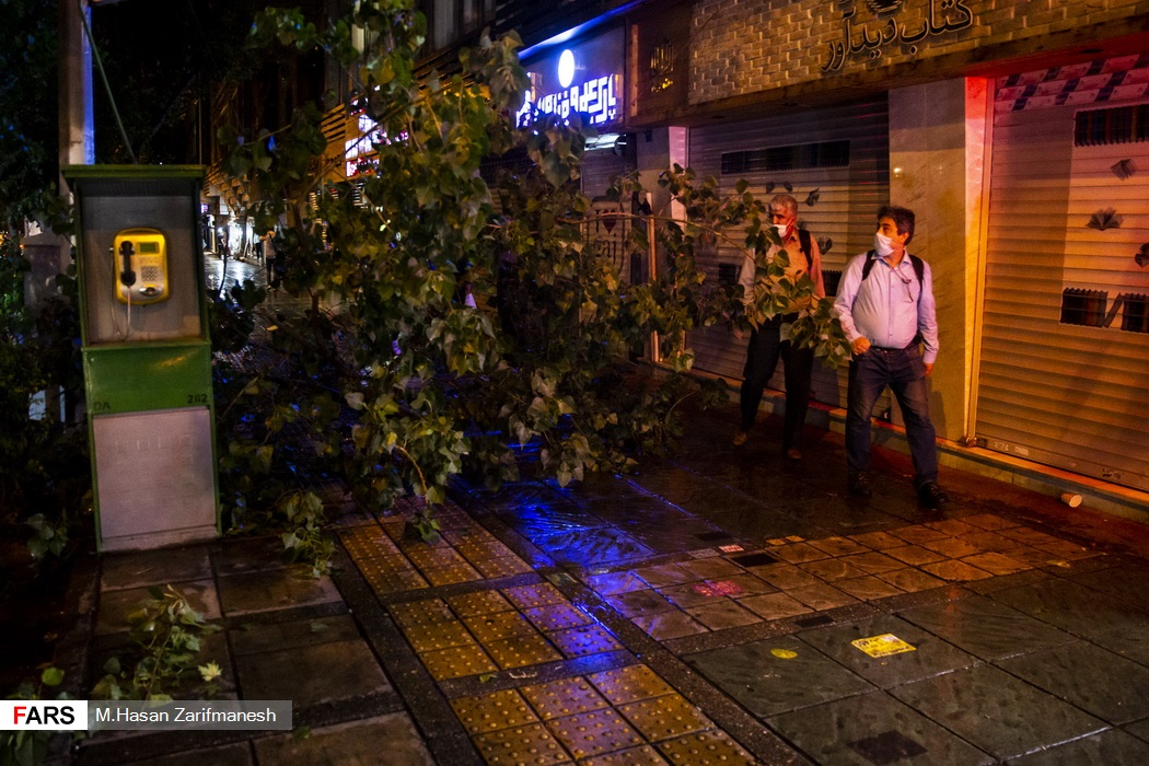 شکسته شدن و افتادن برخی شاخه های درختان پس از وقوع باد و باران شدید در پایتخت که مانع عبور و مرور رهگذران شده است - خیابان انقلاب