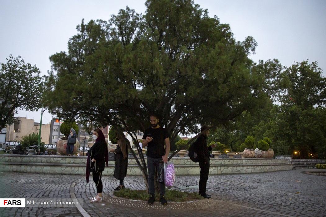 پناه گرفتن برخی از عابران زیر درخت حین بارش باران شدید در پایتخت - تئاتر شهر