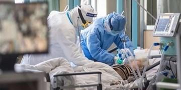 فوت یک بیمار مبتلا به کرونا در بوشهر