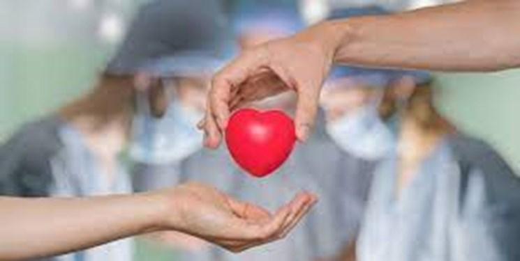 اهدای عضو به ۶ بیمار زندگی دوباره بخشید