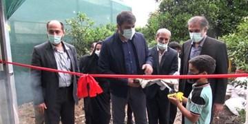 بهرهبرداری از ۱۰۰۰ طرح تولید محصولات گلخانهای و آغاز عملیات اجرایی ۳ هزار گلخانه «برکت»