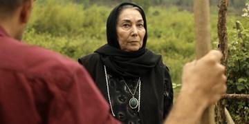 «در کنار پروانه ها» سریالی با موضوع تحول آدم ها/ قصه ای بر مبنای آیات قرآن
