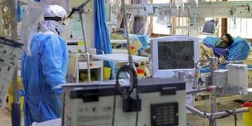 دو فوتی کرونایی دیگر در بوشهر ثبت شد