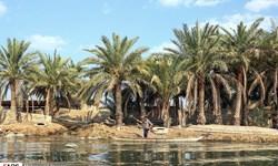 دمای بالاتر از ۴۹ درجه در خوزستان