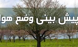 وزش باد شدید درغرب و جنوب تهران/ روند کاهش دما تا سه شنبه ادامه دارد