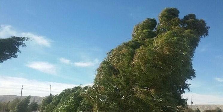 آسمانی آفتابی در اغلب شهرها/باد شدید و گرد و خاک در نوار شرقی کشور
