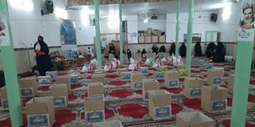 اجرای طرح ویژه «بذر محبت شیعی» در سرخه/ بستههای معیشتی بین نیازمندان توزیع شد