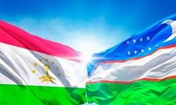 «باختر» میزبان اولین همایش منطقهای تاجیکستان و ازبکستان