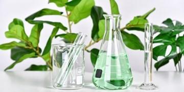 ارائه 35 بسته حمایتی به پژوهشگران تجاریساز در صنعت گیاهان دارویی
