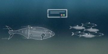 کانون هماهنگی دانش، صنعت و بازار آبزیان ایجاد شد/  کمک به توسعه صنعت پرورش ماهی در قفس