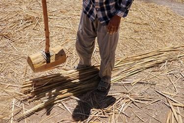 بوریاباف با نیکوب ساقهها را میکوبد و تخت میکند. تا خیزران و نی هندی شکافته شود.