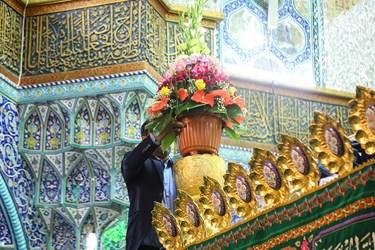 گل آرایی ضریح مطهر حضرت معصومه(س) در آستانه میلاد آن بانوی بزرگوار و آغاز دهه کرامت