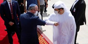 خوشحالی رژیم صهیونیستی از حق رأی امارات در شورای امنیت سازمان ملل
