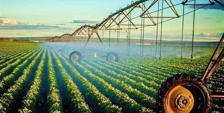 بروکراسی اداری مانع راه تولیدکنندگان