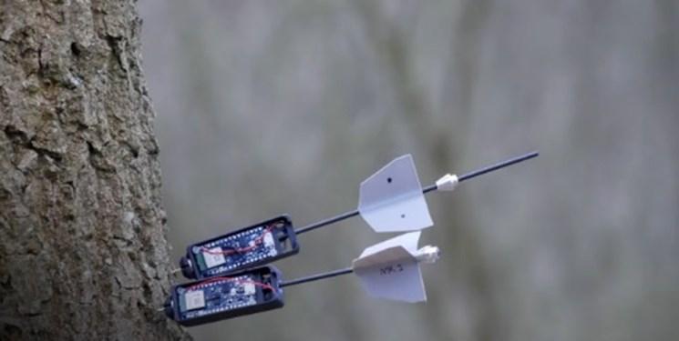 ربات مبتنی بر هوش مصنوعی تغییرات جنگلها را رصد میکند