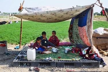 توزیع پیتزا در سالروز میلاد امام رضا(ع) توسط اعضای گروه جهادی پویش همسایه در میان خانوادههای نیازمند در جنوب استان تهران
