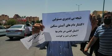 فیلم رفع مشکل دامداران یزدی خارج از اختیارات استانی است