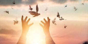 جشن آزادی ۱۶ زندانی به مناسبت عید سعید غدیر خم