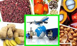 آستارا از قطبهای بزرگ صادرات محصولات کشاورزی است