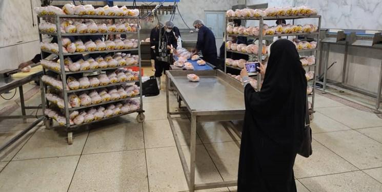 کشتار بیش از ۱۶۰ هزار قطعه مرغ در آذربایجانغربی
