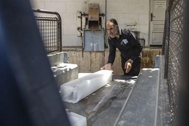تامین و توزیع یخ در بازارچه های محلی یزد