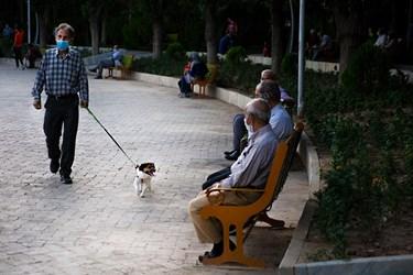 سگگردانی در پارک لاله تهران
