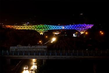 روشنایی چراغ های تزئینی پل طبیعت. حوالی ساعت 23:15
