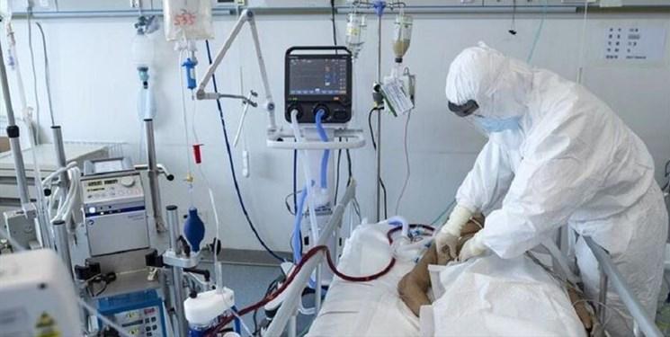فوت 10 بیمار کرونایی در بوشهر