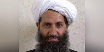 رهبر طالبان: به حل بحران افغانستان از طریق سیاسی متعهد هستیم