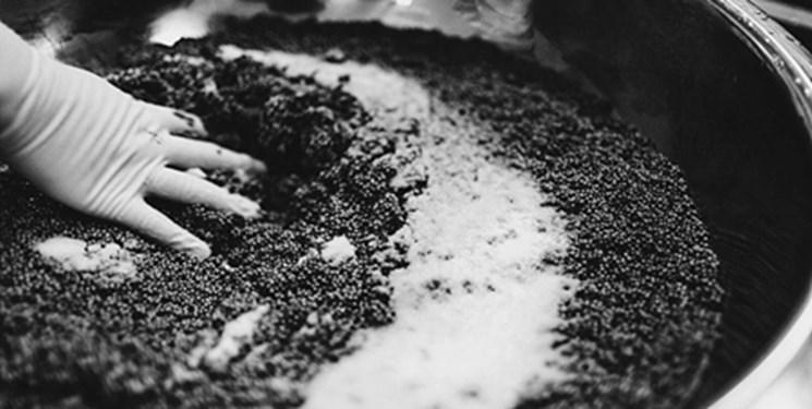 رتبه نخست گیلان در تولید خاویار/۵۰هزار تن ماهی در گیلان تولید شده است