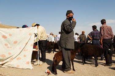 پیرمردی با گوسفند خود در انتظار آمدن مشتری ایستاده است. او برای حفاظت از ابتلا به بیماری کرونا بر چهره اش ماسک زده است.
