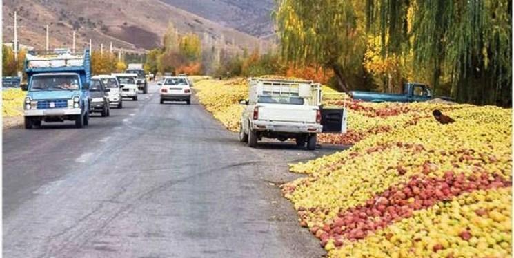 خرید سیب صنعتی غرب کشور از امروز آغاز شد/انجام صادرات به روسیه و ترکیه