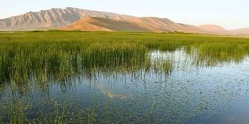 احیای تالاب گندمان در دستورکار محیط زیست/ هرزآبهای سطحی به سمت تالاب هدایت میشود