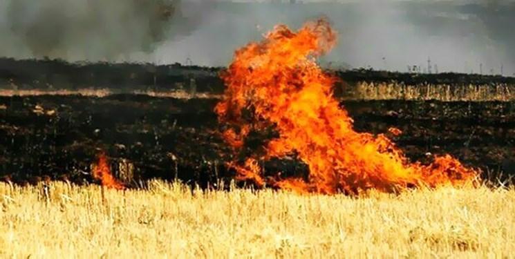 آتشسوزی ۴۰ تن جو و کاه در روستای نوده چناران